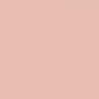 Vopsea lavabila de interior colorata Roz Quartz 8.5 L