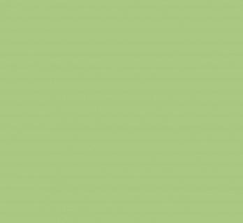 Vopsea lavabila de interior colorata Verde Feriga 8.5 L